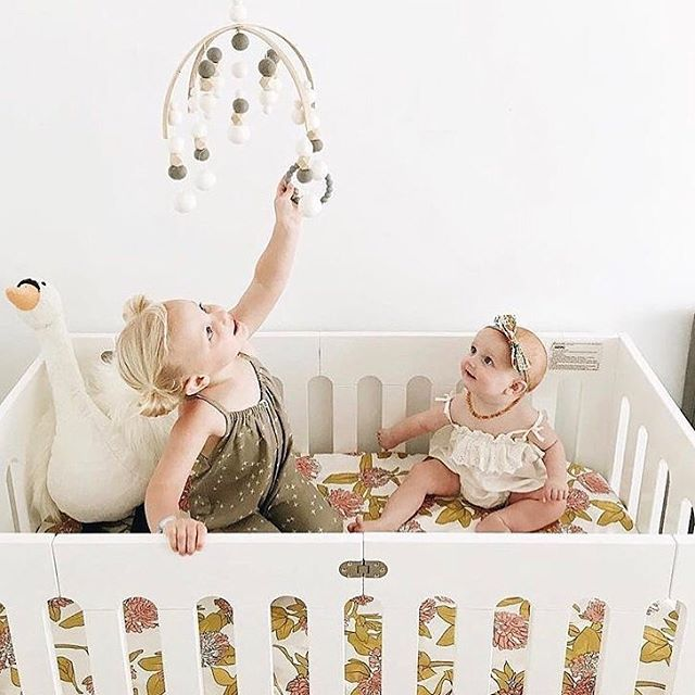 best baby cot bloom papa