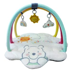Play Mats Winnie the Pooh Playmat with Toybar 21